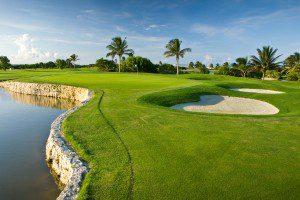humus para campos de golf